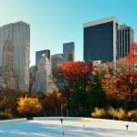 Central Park Autumn — Stock Photo #54080717