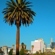 Los Angeles downtown — Stock Photo #54087861