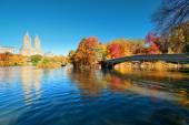 Central Park Autumn — Stock Photo