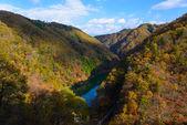 Tenryu river in Autumn, in Nagano, Japan — Stock Photo