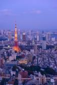 Tokyo in the twilight — Stock Photo
