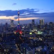The city of Tokyo and Tokyo Tower Olympic illumination — Stock Photo #60691479