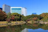 Autumn leaves in Hamarikyu Gardens, Tokyo — Stock Photo