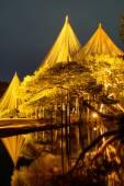 Jardim Kenrokuen à noite em Kanazawa, Japão — Fotografia Stock
