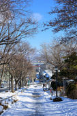 Motoizaka nella città di Hakodate, Hokkaido — Foto Stock