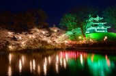 Cherry blossoms and Takada Castle at night — Stock Photo