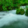 Oirase gorge in Aomori, Japan — Stock Photo #69741417
