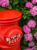 Hydrangeas and Post — Stock Photo