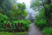 Amidadera temple and Hydrangeas — Stock Photo
