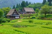 Gassho-zukuri village — Stock Photo