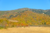 Autumn foliage of Mt.Hachimantai — Photo