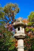 Autumn foliage in the Kyu-Furukawa Gardens, Tokyo — Stock Photo