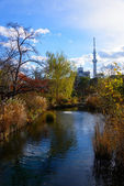 Tokyo Skytree and Mukojima-Hyakkaen Garden in autumn — Stock Photo