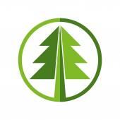 Grüne Runde Vektor Weihnachtsbaum Symbol auf weißem Hintergrund. — Stockvektor