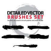Detailed hand-painted brushstrokes — Stock Vector