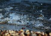Ocean water background — Stock Photo