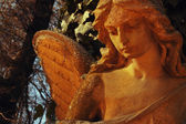 Golden angel in the sunlight (antique statue) — Stock Photo