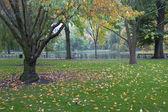 Giardino pubblico comune di boston — Foto Stock