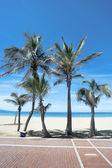 Ein tag am strand — Stockfoto