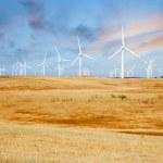 Wind Turbines on California Sunset Hills — Stock Photo #78888400