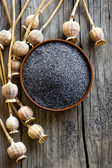 Poppy seeds — Stock Photo