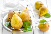 Pears with leaves — Stock Photo