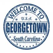 Welcome to Georgetown stamp — Vettoriale Stock