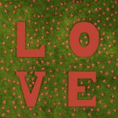 Inscription love on the green grass — Stock Photo