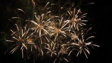 Beautiful Fireworks Exploding On Black Background. Slow Motion. — Stockvideo