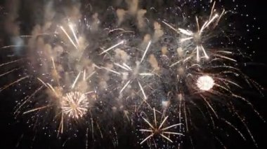 Beautiful Fireworks Exploding On Black Background in Slow mo — Stock Video