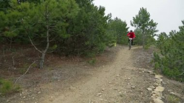 EDITORIAL. Two Bikers Racing Downhill In Pine Forest — Stock Video