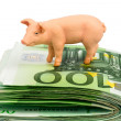 Pig on euro banknotes money — Stock Photo #58590663
