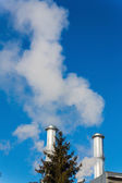 Industry chimney with tree — Stock Photo