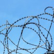 Barbed wire — Stock Photo #59183251