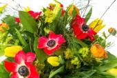 Bouquet de fleurs du printemps — Photo