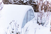 Greenhouse in the snow — Stock Photo