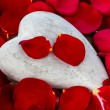 Red roses with heart. love for valentines day — Stock Photo #59913715