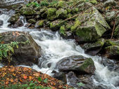 Creek with running water — Stock Photo