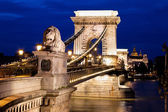Hungary, budapest, chain bridge. — Stock Photo