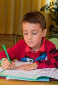 Learning for homework — Stock Photo