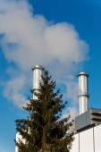 Industrial chimney with tree — Stock Photo