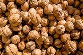 Many walnuts close-up — Stock Photo