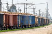 Sugar beet and freight — Stock Photo
