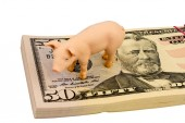 Pig on dollar banknotes — Stock Photo