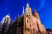 Austria, vienna, st. stephens cathedral, — Stock Photo