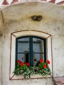 Finestra con fiori — Foto Stock