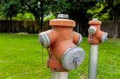 Hydrant on a meadow — Foto Stock