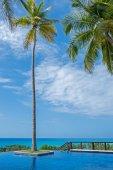 Piscina con palmera sobre el océano bajo el cielo — Foto de Stock