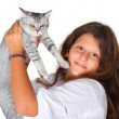 Girl and scottish straight kitten — Stock Photo #52394519