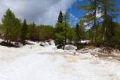 Riglav National Park,Slovenia — Stock Photo